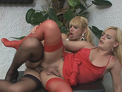 Heated ladyboy going for arse drilling exercises with the brush transsexual neighbour