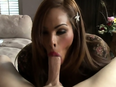 Latina shemale prostitute give broad in the beam tits eats up a throbbing boner