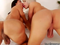 Yummy tgirl babes Jhenifer and Sabrina all round turns fucked by a torrid stud